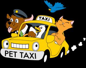 pet-taxi-cartoon-1