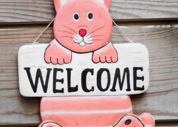 Roze welkom kat
